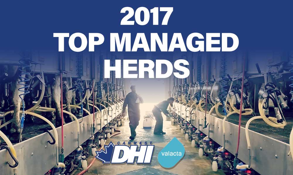 DHI Top Managed Herds